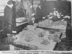 Vihannesosastossa oli Kangasalan puutarhaviljelijöiden osuus huomattavan suuri. – Edessä Heikkisen ja takana Irja Sepän puutarhojen palkittuja tuotteita.