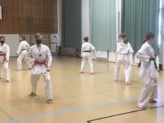 Länkyn Taekwondon näytöstiimi harjoittelelee esitystä helmikuussa.