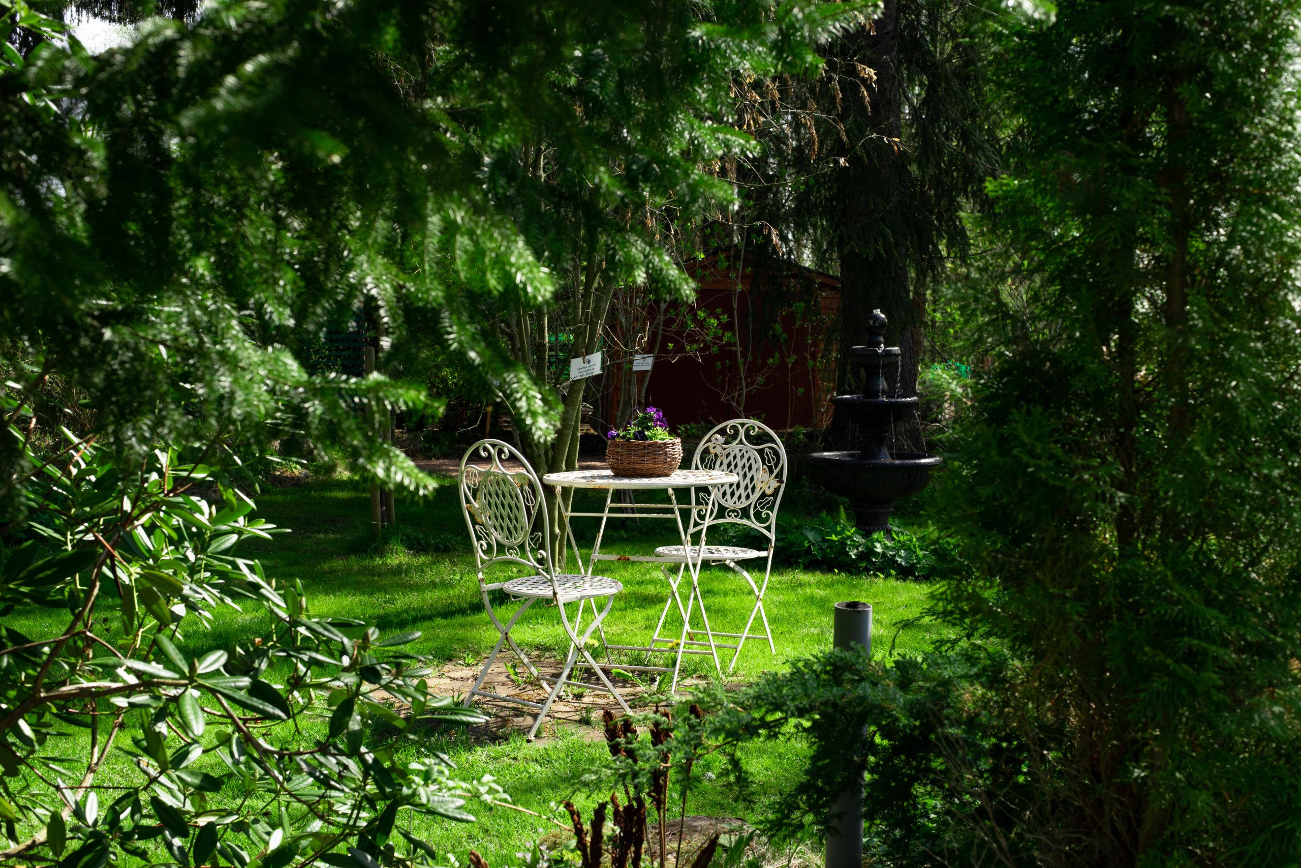 Arboretum Liuksialassa tarjoaa herkkuja silmälle ja sielulle. Poikkea torstai- ja sunnuntai-iltapäivisin. Kuva: Tiia Ennala / Visit Kangasala