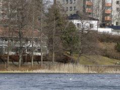 Kirkkojärven vesilintujen laskenta toteutetaan nyt keväällä kolmena ajankohtana.