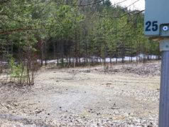 Koirapuistosuunnitelmasta jätetyissä muistutuksissa kannettiin muun muassa huolta mahdollisista pysäköintiongelmista, kuten autojen parkkeeraamisesta lähikiinteistöjen asukkaiden maksullisille paikoille.
