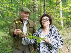 Iiris Vaasio-Saarisen ja Markus Jaskarin omistama pähkinäpensaslehto on nyt yksityinen luonnonsuojelualue. Suurin osa pensaista on vielä pienikokoisia, mutta alueelta löytyy useampiakin täysikasvuisia yksilöitä.