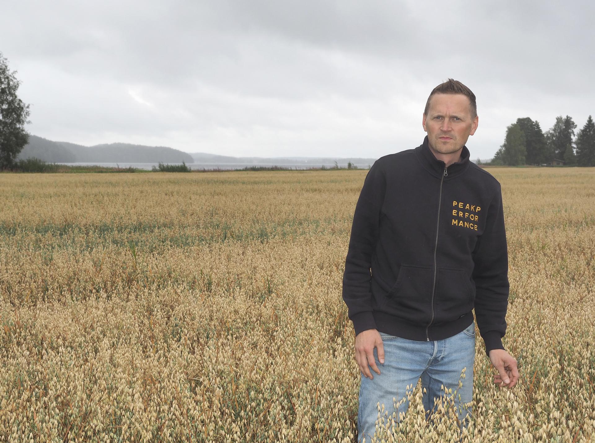 Jussi Joutsiniemi nosti elintarvikekauran osuutta pelloillaan. Viljat ovat kärsineet kuivuudesta. Viimepäivien sateista on vain haittaa laadulle.