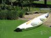 Pirkanmaan ely-keskus muistuttaa, että runsaasti sinilevää sisältävä vesi ei sovi uimiseen eikä vettä muutoinkaan tule käyttää. Kuva: Jussi Iso-Tuisku